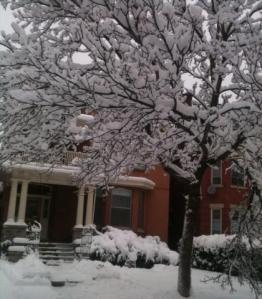 Snowy SHill