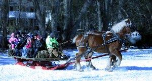 Winter-Carnival-2010-9117